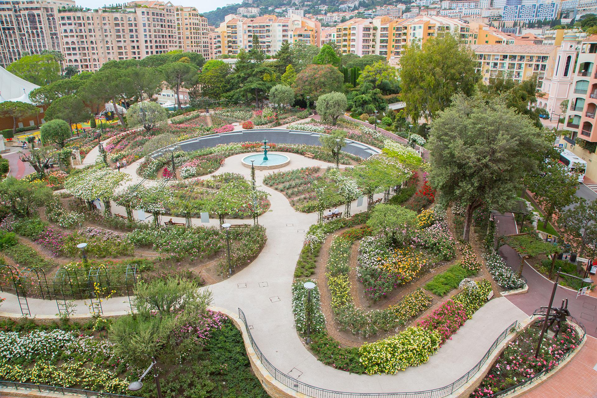 Image result for Princess Grace Rose Garden